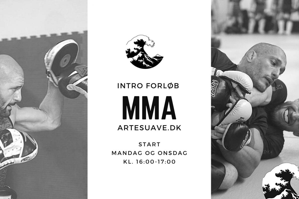 Nyt Intro MMA Forløb